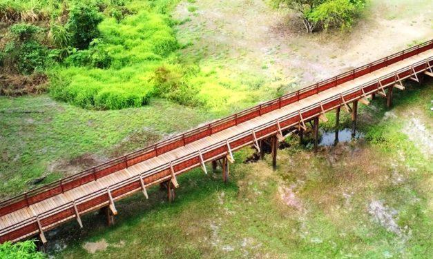 Réhabilitation de la Passerelle en bois de Cayodé
